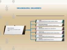 Organigramma del team Organdhito